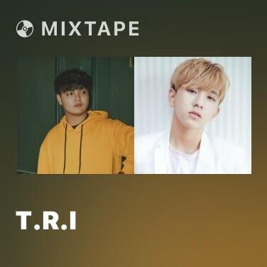 Radio T.R.I - Various Artists