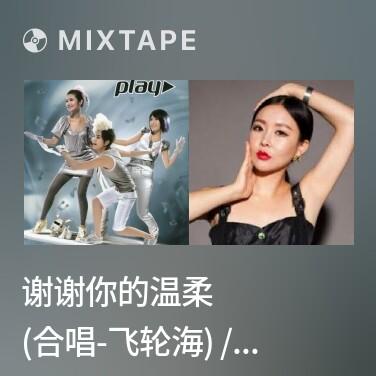 Mixtape 谢谢你的温柔 (合唱-飞轮海) / Cảm Ơn Sự Dịu Dàng Của Anh - Various Artists
