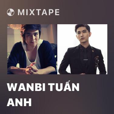 Radio Wanbi Tuấn Anh - Various Artists