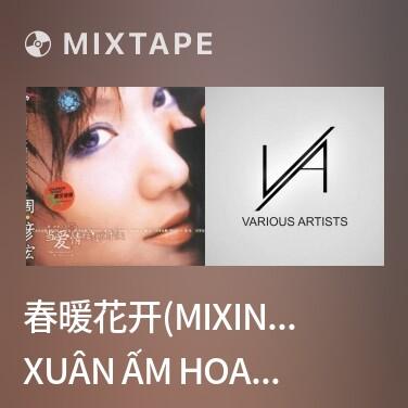 Radio 春暖花开(MIXING版)/ Xuân Ấm Hoa Nở - Various Artists