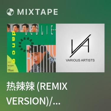 Radio 热辣辣 (Remix Version)/ Những Ngày Hè Nóng Bỏng - Various Artists