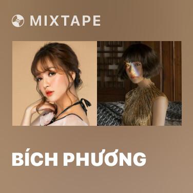 Radio Bích Phương - Various Artists