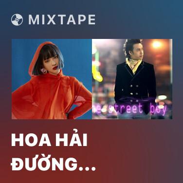 Mixtape Hoa Hải Đường (Cover) - Various Artists