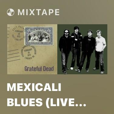 Radio Mexicali Blues (Live at Salt Palace, Salt Lake City, UT, February 28, 1973) - Various Artists