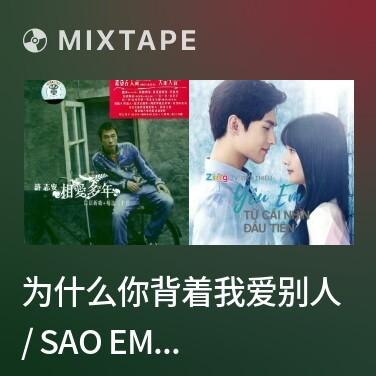 Mixtape 为什么你背着我爱别人 / Sao Em Lại Yêu Người Khác Sau Lưng Anh? - Various Artists