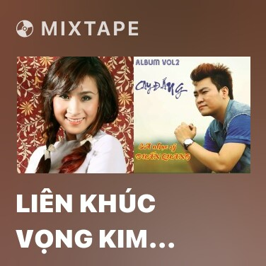 Mixtape Liên Khúc Vọng Kim Lang - Bậu Đi Theo Người - Various Artists
