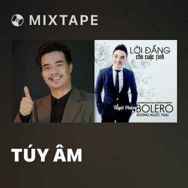 Mixtape Túy Âm - Various Artists