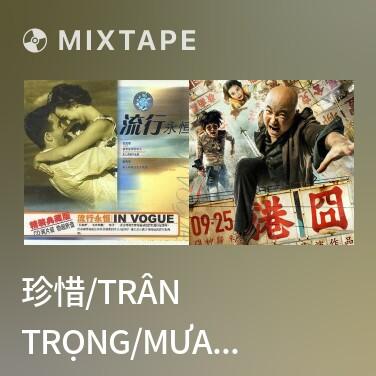 Mixtape 珍惜/Trân Trọng/Mưa Trên Cuộc Tình - Various Artists
