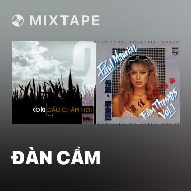 Mixtape Đàn Cầm - Various Artists