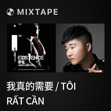 Mixtape 我真的需要 / Tôi Rất Cần - Various Artists