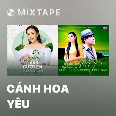 Mixtape Cánh Hoa Yêu - Various Artists