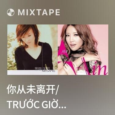 Mixtape 你从未离开/ Trước Giờ Anh Vốn Không Ra Đi - Various Artists