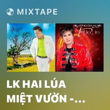 Mixtape LK Hai Lúa Miệt Vườn - Dây Đủng Đỉnh Buồn - Anh Ba Khía - Various Artists