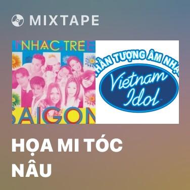 Mixtape Họa Mi Tóc Nâu - Various Artists