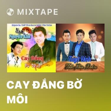 Mixtape Cay Đắng Bờ Môi - Various Artists