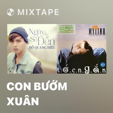 Mixtape Con Bướm Xuân - Various Artists