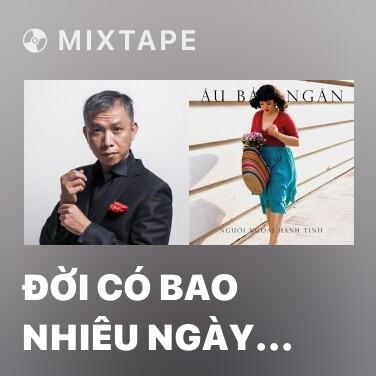 Mixtape Đời Có Bao Nhiêu Ngày Vui - Various Artists