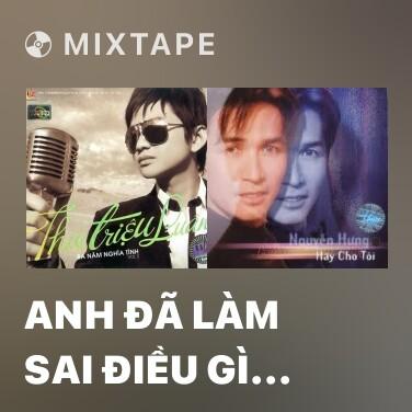 Mixtape Anh Đã Làm Sai Điều Gì (Remix) - Various Artists