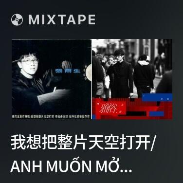 Mixtape 我想把整片天空打开/ Anh Muốn Mở Ra Cả Bầu Trời - Various Artists