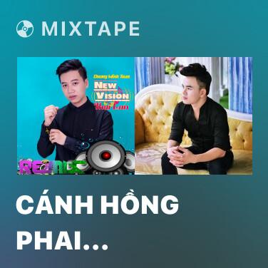 Mixtape Cánh Hồng Phai (Remix) - Various Artists