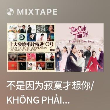 Mixtape 不是因为寂寞才想你/ Không Phải Vì Cô Đơn Mới Nhớ Anh - Various Artists