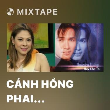 Mixtape Cánh Hồng Phai (Remix)
