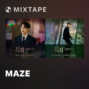 Mixtape Maze - Various Artists