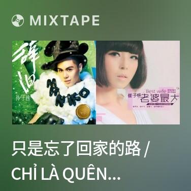 Mixtape 只是忘了回家的路 / Chỉ Là Quên Mất Đường Về Nhà - Various Artists