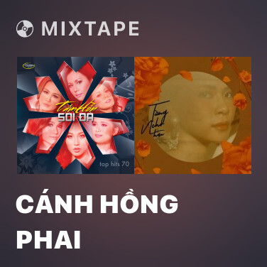 Mixtape Cánh Hồng Phai - Various Artists