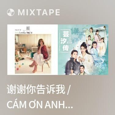 Mixtape 谢谢你告诉我 / Cám Ơn Anh Cho Em Biết - Various Artists