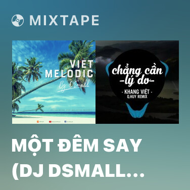 Mixtape Một Đêm Say (DJ DSmall Remix) - Various Artists
