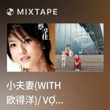 Mixtape 小夫妻(With 欧得洋)/ Vợ Chồng Nhỏ - Various Artists