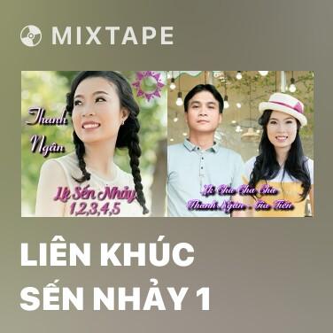 Mixtape Liên Khúc Sến Nhảy 1 - Various Artists