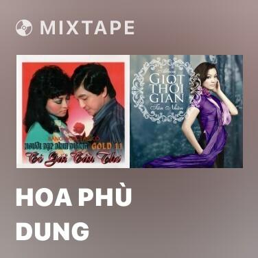 Mixtape Hoa Phù Dung - Various Artists