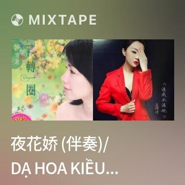 Mixtape 夜花娇 (伴奏)/ Dạ Hoa Kiều (Nhạc Đệm) -
