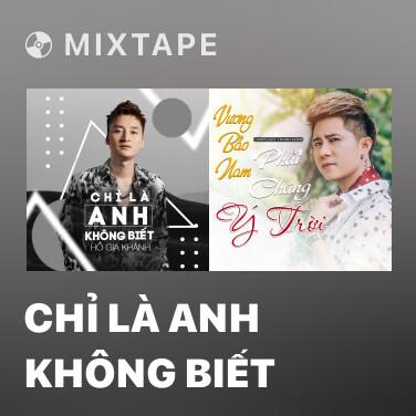 Mixtape Chỉ Là Anh Không Biết - Various Artists