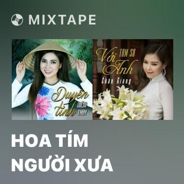 Mixtape Hoa Tím Người Xưa