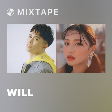 Mixtape Will - Various Artists
