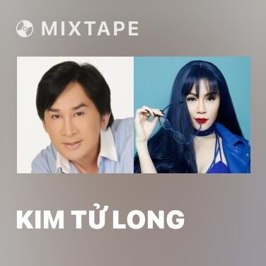 Mixtape Kim Tử Long - Various Artists