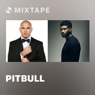 Mixtape Pitbull - Various Artists