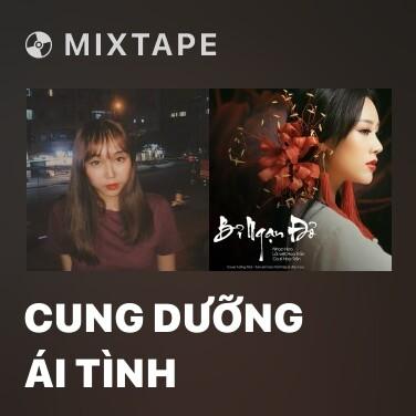 Mixtape Cung Dưỡng Ái Tình - Various Artists
