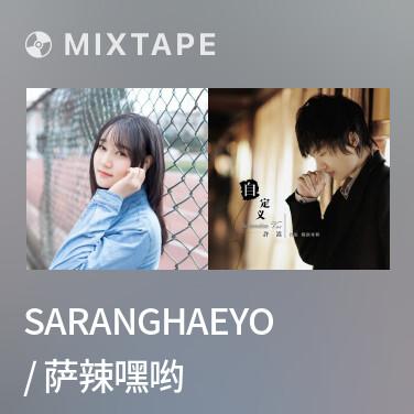 Mixtape Saranghaeyo / 萨辣嘿哟 - Various Artists