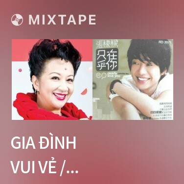 Mixtape Gia Đình Vui Vẻ / 皆大歡喜 - Various Artists