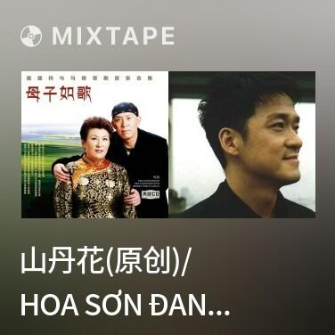 Mixtape 山丹花(原创)/ Hoa Sơn Đan (Nguyên Tác) - Various Artists