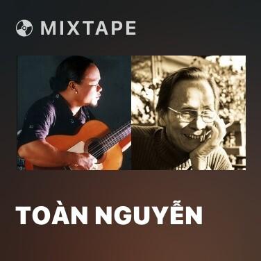 Mixtape Toàn Nguyễn - Various Artists