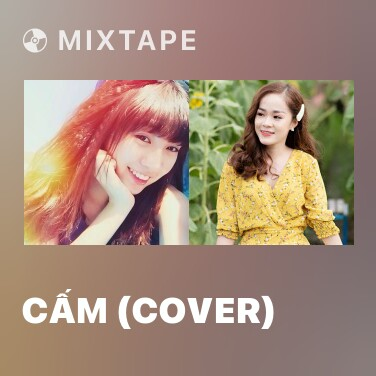 Mixtape Cấm (Cover) - Various Artists