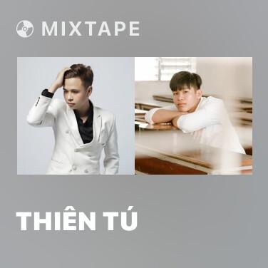 Mixtape Thiên Tú - Various Artists